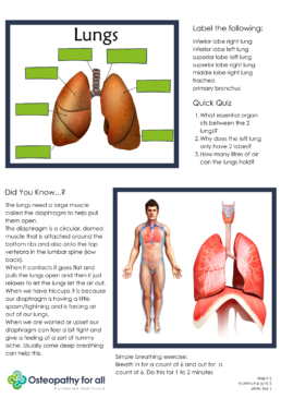 Lung activity sheet