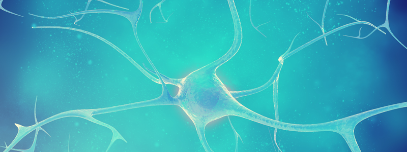Illustration-of-central-nervous-system-and-the-impact-of-stress-on-the-body