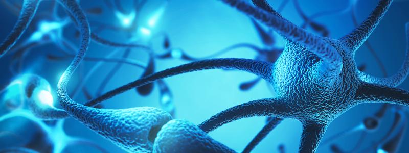 Illustration-of-neurotransmitters